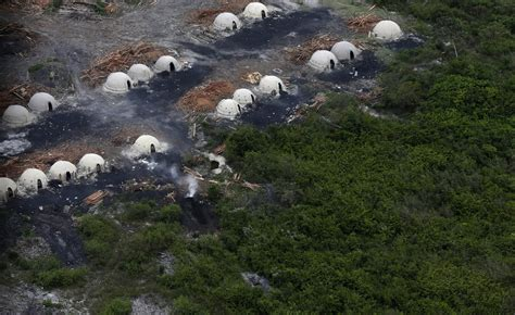 How Fast Is The Rainforest Disappearing? Brazil Confirms